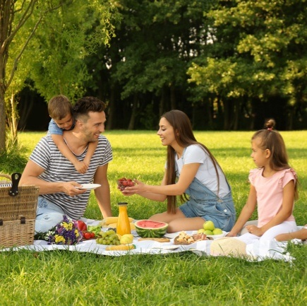 Picnic Product Collection: Help Your Customers Get Picnic-Ready